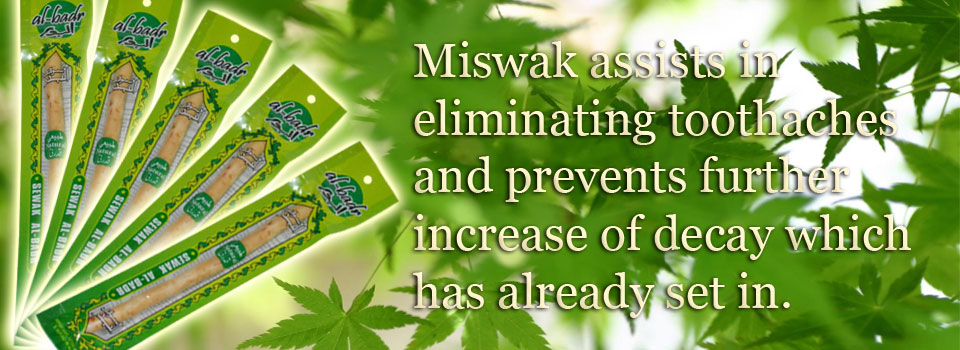 Miswaks: Uses, Advantages and Benefits